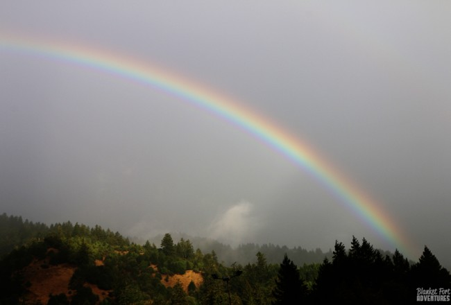 Rainbows and Redwoods