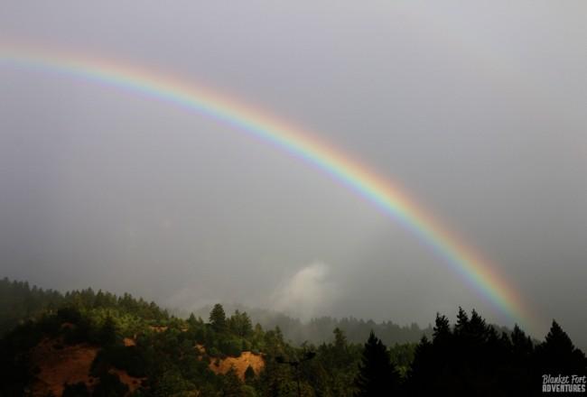 Rainbows and Redwoods