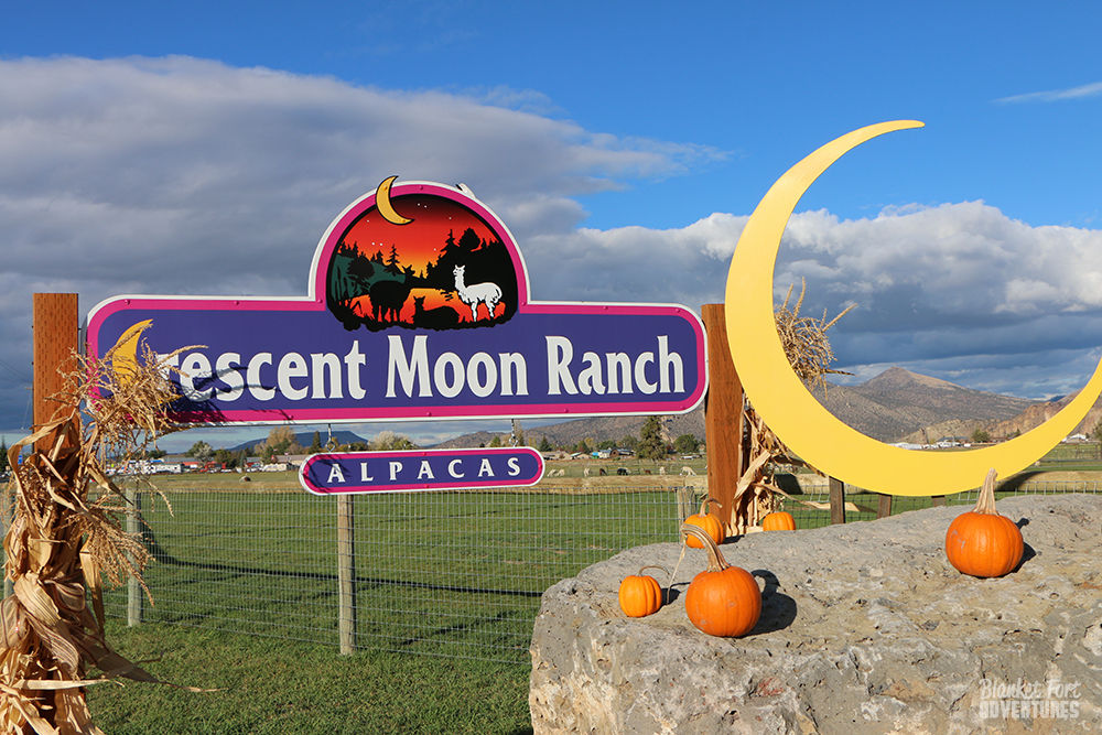 Crescent Moon Ranch Alpaca Farm
